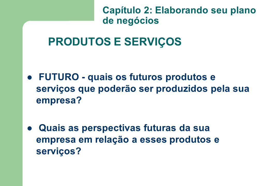 FUTURO - quais os futuros produtos e serviços que poderão ser produzidos pela sua empresa? Quais as perspectivas futuras da sua empresa em relação a e