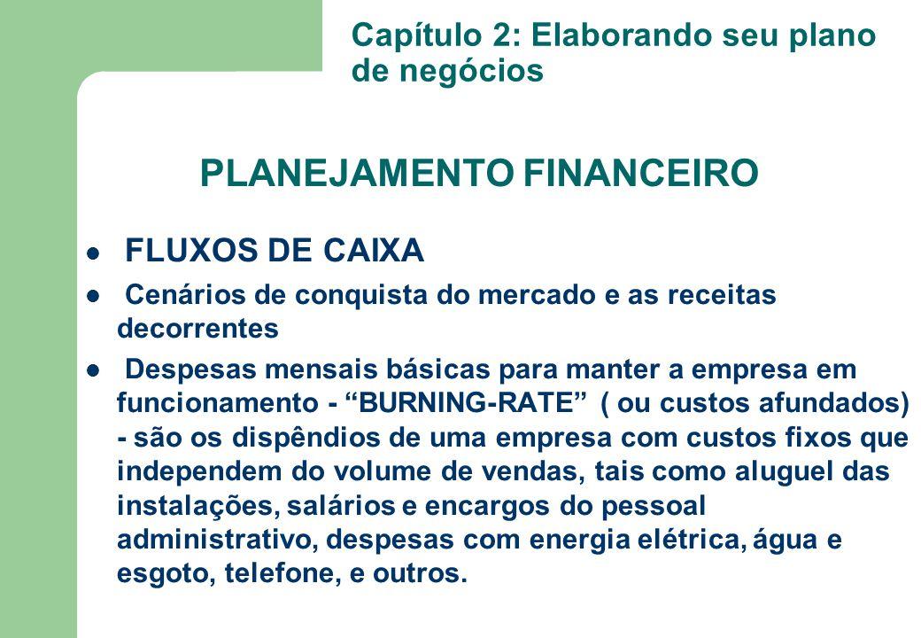 """FLUXOS DE CAIXA Cenários de conquista do mercado e as receitas decorrentes Despesas mensais básicas para manter a empresa em funcionamento - """"BURNING-"""