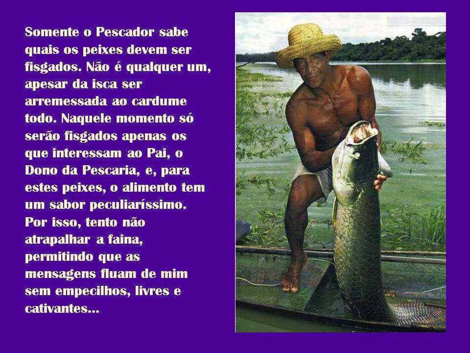 Somente o Pescador sabe quais os peixes devem ser fisgados.