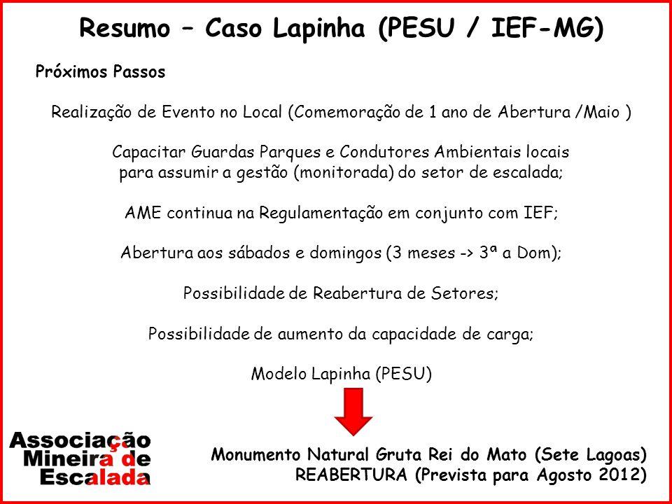 Resumo – Caso Lapinha (PESU / IEF-MG) Próximos Passos Realização de Evento no Local (Comemoração de 1 ano de Abertura /Maio ) Capacitar Guardas Parque