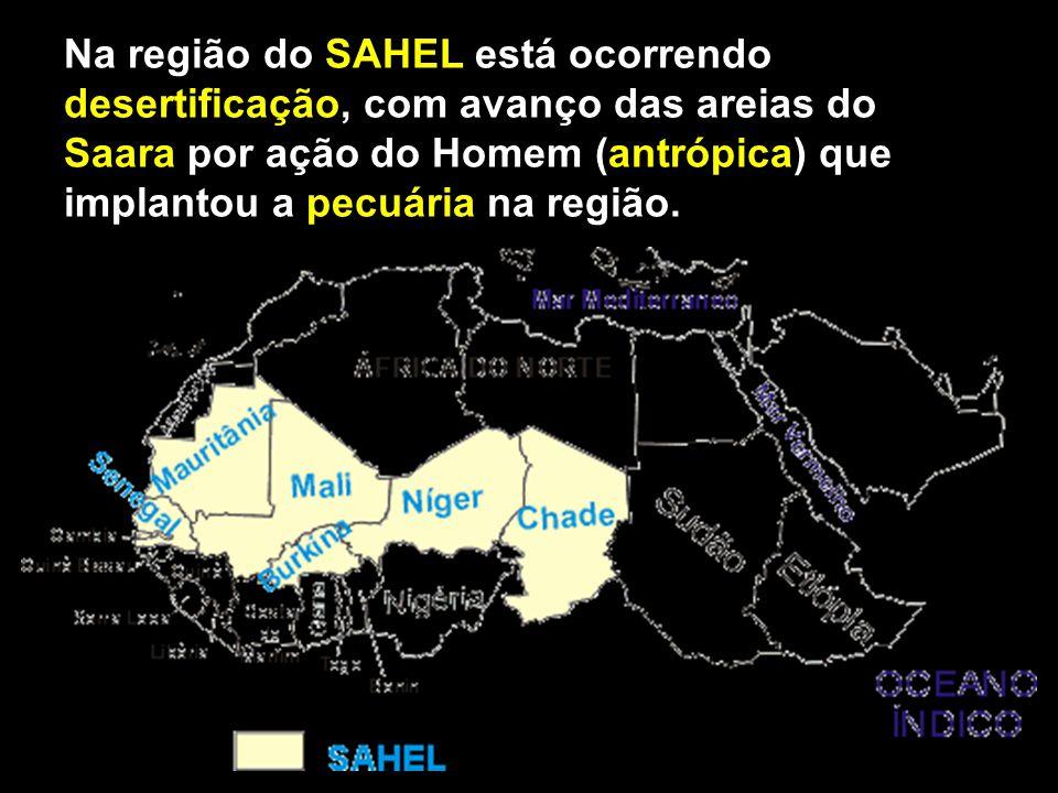 Na região do SAHEL está ocorrendo desertificação, com avanço das areias do Saara por ação do Homem (antrópica) que implantou a pecuária na região.