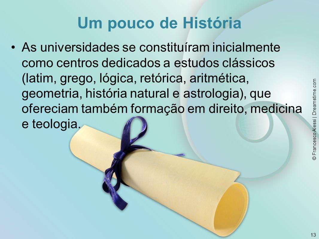 As universidades se constituíram inicialmente como centros dedicados a estudos clássicos (latim, grego, lógica, retórica, aritmética, geometria, história natural e astrologia), que ofereciam também formação em direito, medicina e teologia.