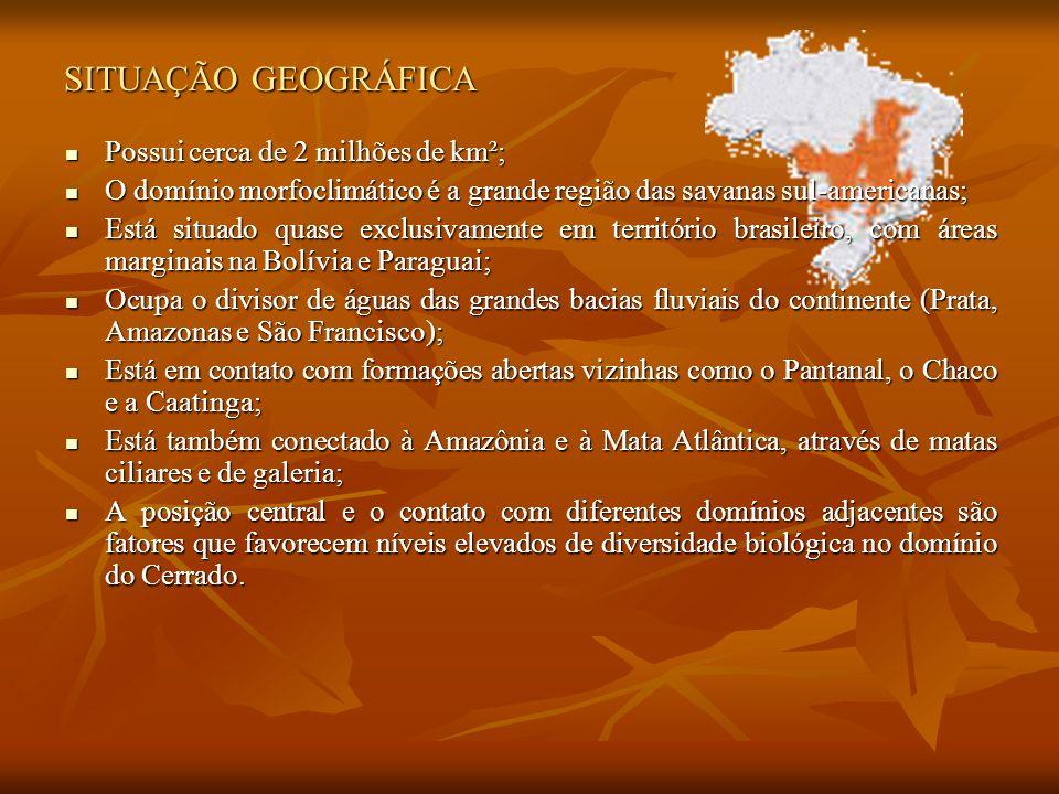 SITUAÇÃO GEOGRÁFICA Possui cerca de 2 milhões de km²; Possui cerca de 2 milhões de km²; O domínio morfoclimático é a grande região das savanas sul-americanas; O domínio morfoclimático é a grande região das savanas sul-americanas; Está situado quase exclusivamente em território brasileiro, com áreas marginais na Bolívia e Paraguai; Está situado quase exclusivamente em território brasileiro, com áreas marginais na Bolívia e Paraguai; Ocupa o divisor de águas das grandes bacias fluviais do continente (Prata, Amazonas e São Francisco); Ocupa o divisor de águas das grandes bacias fluviais do continente (Prata, Amazonas e São Francisco); Está em contato com formações abertas vizinhas como o Pantanal, o Chaco e a Caatinga; Está em contato com formações abertas vizinhas como o Pantanal, o Chaco e a Caatinga; Está também conectado à Amazônia e à Mata Atlântica, através de matas ciliares e de galeria; Está também conectado à Amazônia e à Mata Atlântica, através de matas ciliares e de galeria; A posição central e o contato com diferentes domínios adjacentes são fatores que favorecem níveis elevados de diversidade biológica no domínio do Cerrado.