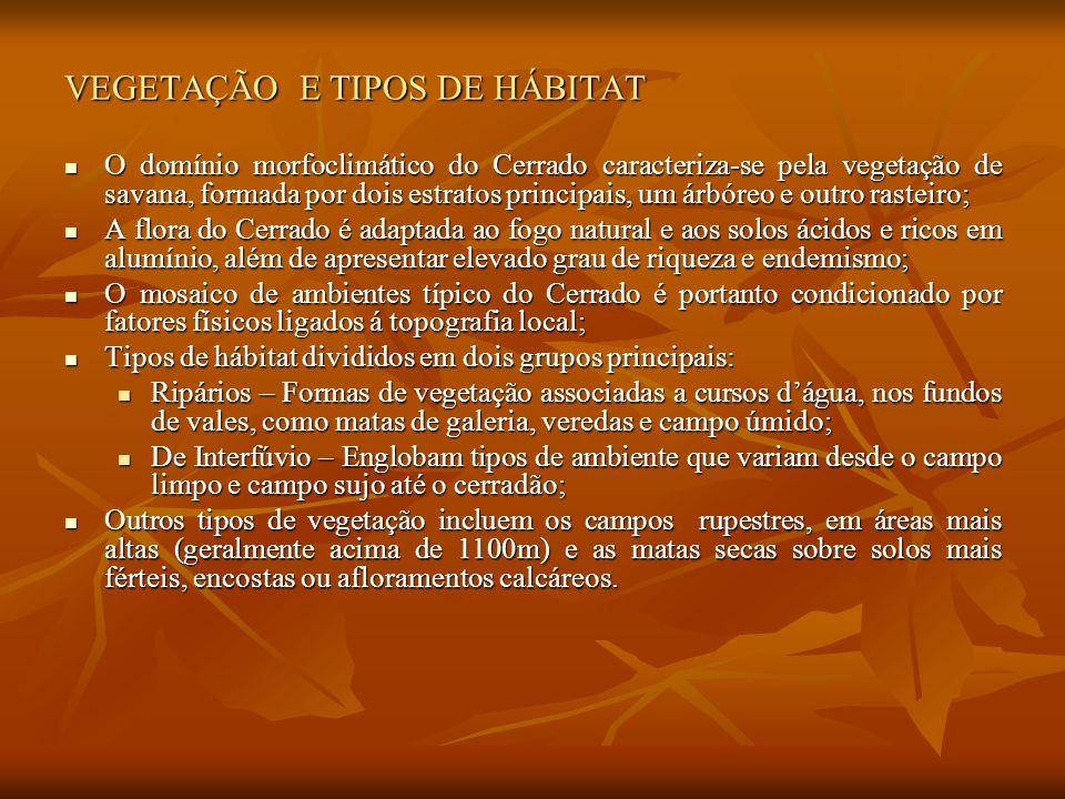 VEGETAÇÃO E TIPOS DE HÁBITAT O domínio morfoclimático do Cerrado caracteriza-se pela vegetação de savana, formada por dois estratos principais, um árb