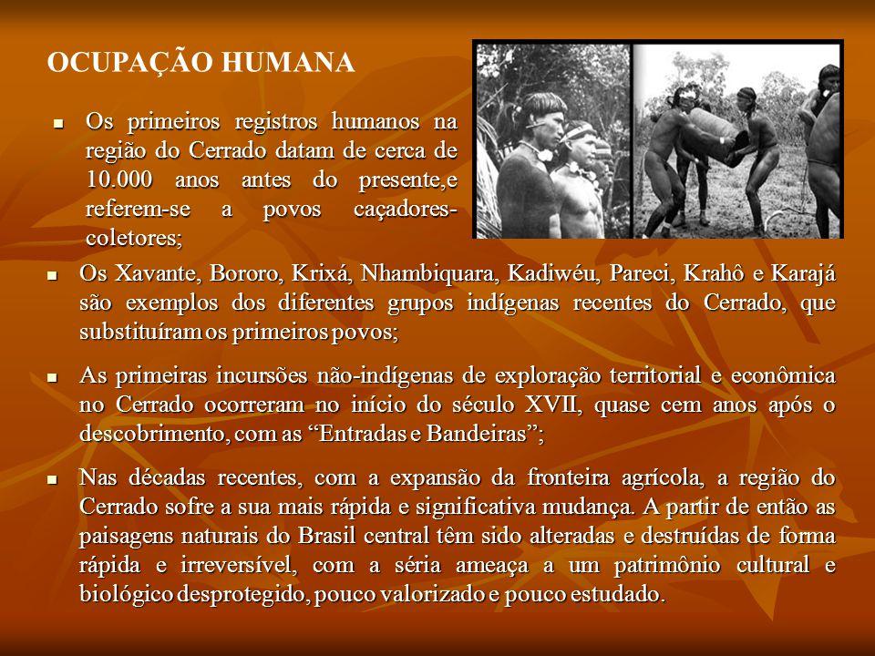 Os primeiros registros humanos na região do Cerrado datam de cerca de 10.000 anos antes do presente,e referem-se a povos caçadores- coletores; Os primeiros registros humanos na região do Cerrado datam de cerca de 10.000 anos antes do presente,e referem-se a povos caçadores- coletores; OCUPAÇÃO HUMANA Os Xavante, Bororo, Krixá, Nhambiquara, Kadiwéu, Pareci, Krahô e Karajá são exemplos dos diferentes grupos indígenas recentes do Cerrado, que substituíram os primeiros povos; Os Xavante, Bororo, Krixá, Nhambiquara, Kadiwéu, Pareci, Krahô e Karajá são exemplos dos diferentes grupos indígenas recentes do Cerrado, que substituíram os primeiros povos; As primeiras incursões não-indígenas de exploração territorial e econômica no Cerrado ocorreram no início do século XVII, quase cem anos após o descobrimento, com as Entradas e Bandeiras ; As primeiras incursões não-indígenas de exploração territorial e econômica no Cerrado ocorreram no início do século XVII, quase cem anos após o descobrimento, com as Entradas e Bandeiras ; Nas décadas recentes, com a expansão da fronteira agrícola, a região do Cerrado sofre a sua mais rápida e significativa mudança.