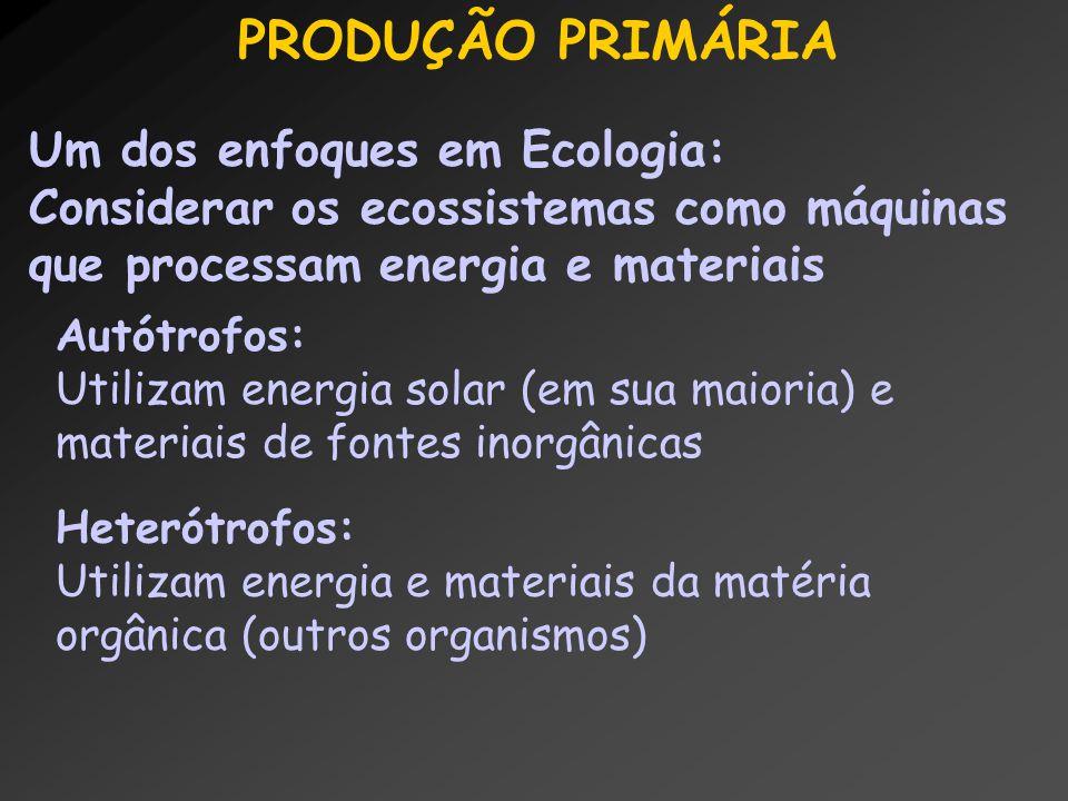 PRODUÇÃO PRIMÁRIA Um dos enfoques em Ecologia: Considerar os ecossistemas como máquinas que processam energia e materiais Autótrofos: Utilizam energia