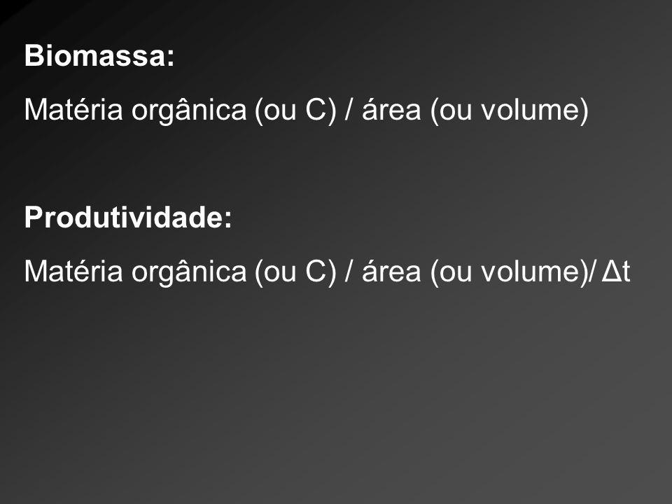 Biomassa: Matéria orgânica (ou C) / área (ou volume) Produtividade: Matéria orgânica (ou C) / área (ou volume)/ Δt