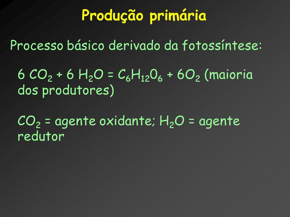 Produção primária Processo básico derivado da fotossíntese: 6 CO 2 + 6 H 2 O = C 6 H 12 0 6 + 6O 2 (maioria dos produtores) CO 2 = agente oxidante; H