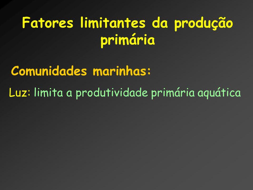 Fatores limitantes da produção primária Comunidades marinhas: Luz: limita a produtividade primária aquática