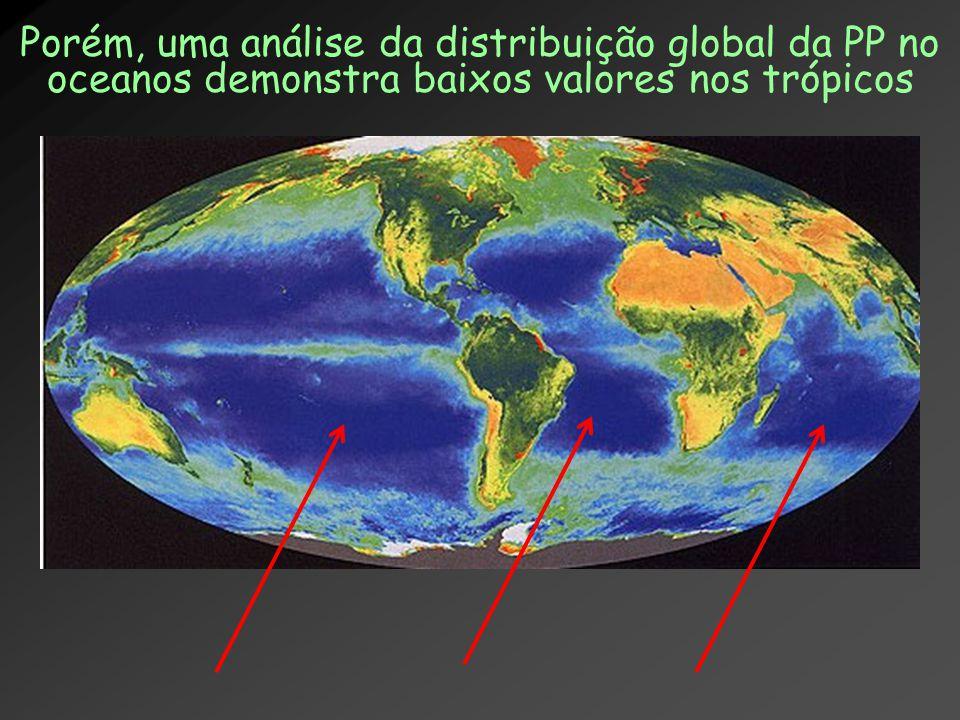 Porém, uma análise da distribuição global da PP no oceanos demonstra baixos valores nos trópicos