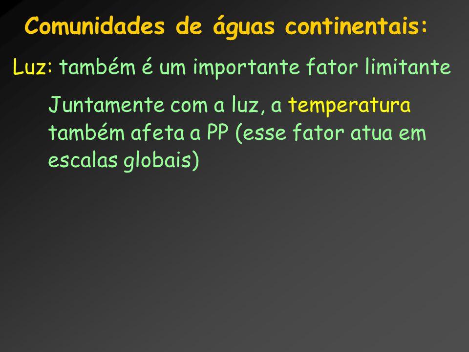Comunidades de águas continentais: Luz: também é um importante fator limitante Juntamente com a luz, a temperatura também afeta a PP (esse fator atua
