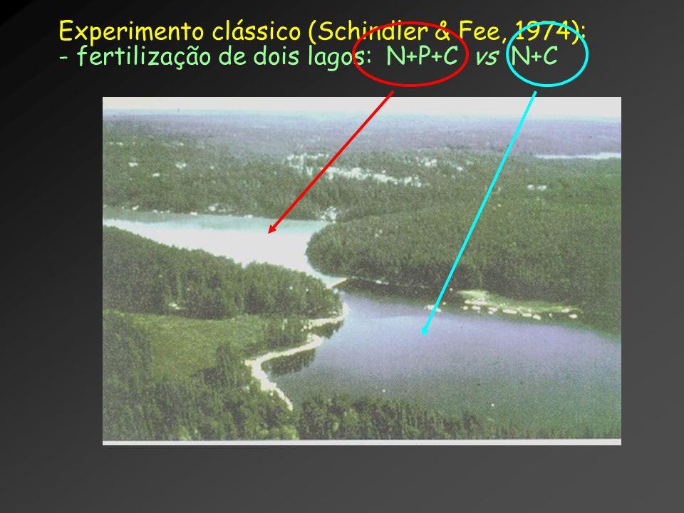 Experimento clássico (Schindler & Fee, 1974): - fertilização de dois lagos: N+P+C vs N+C