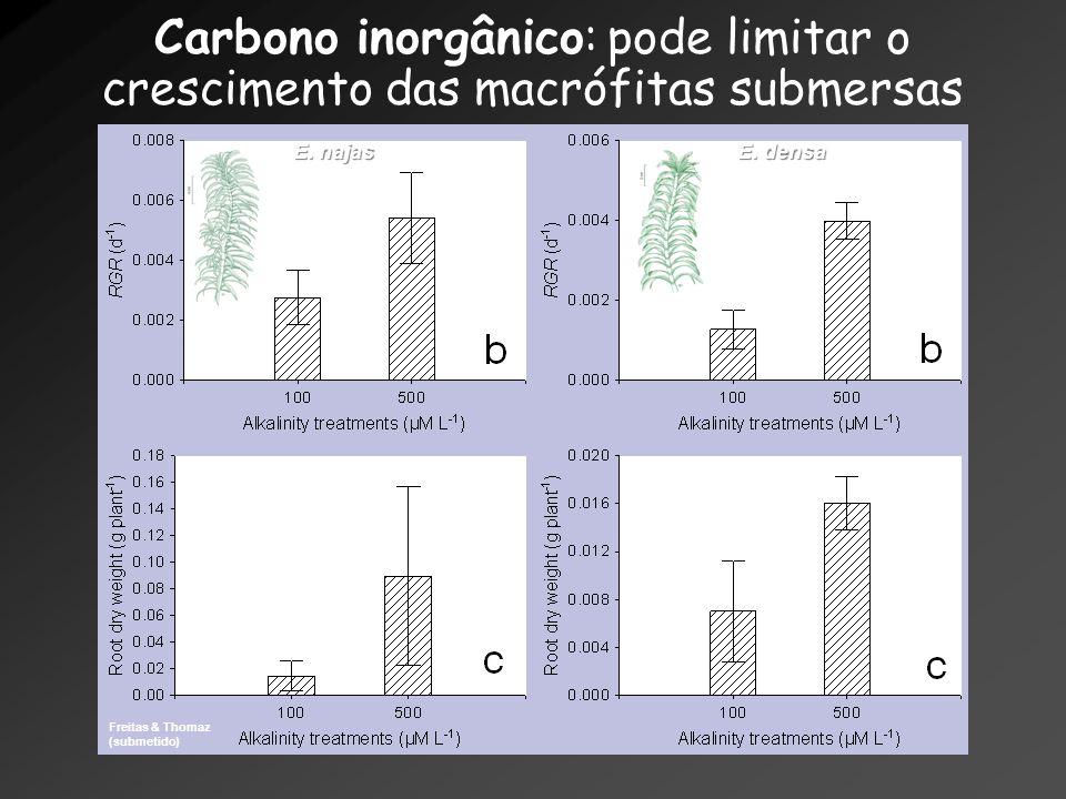 Carbono inorgânico: pode limitar o crescimento das macrófitas submersas Freitas & Thomaz (submetido) E. najas E. densa