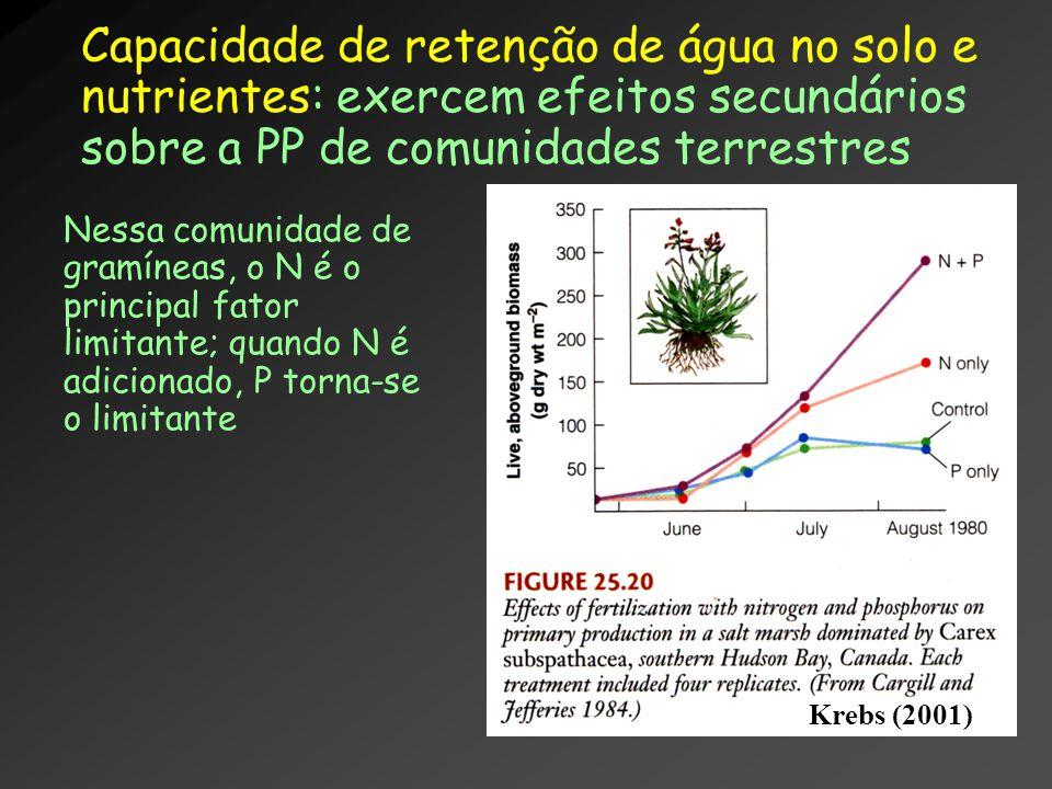 Capacidade de retenção de água no solo e nutrientes: exercem efeitos secundários sobre a PP de comunidades terrestres Nessa comunidade de gramíneas, o