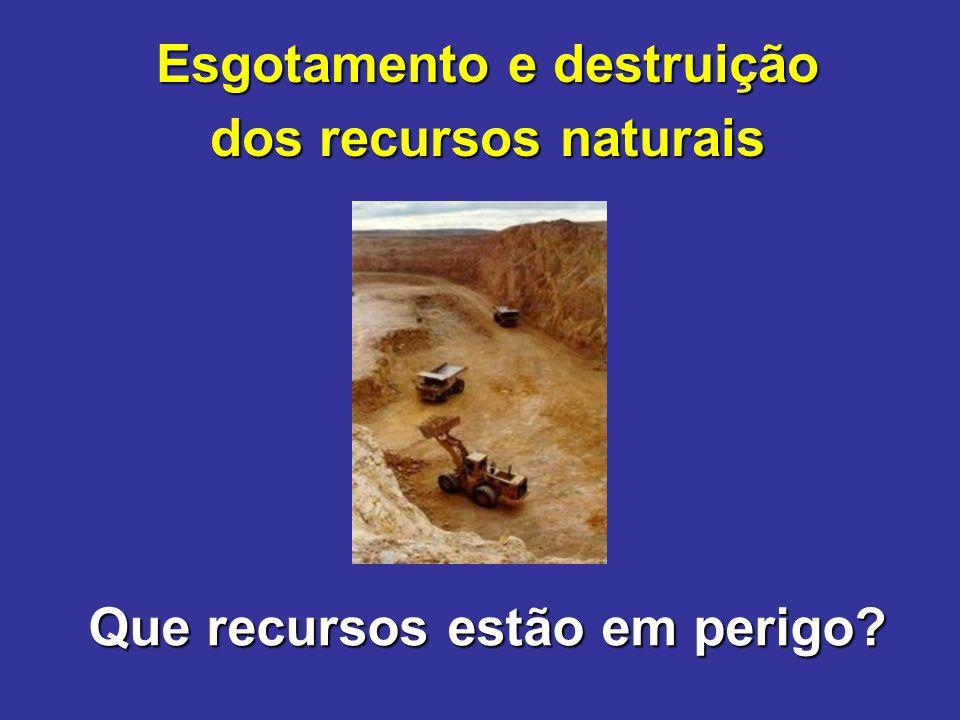Que recursos estão em perigo? Esgotamento e destruição dos recursos naturais