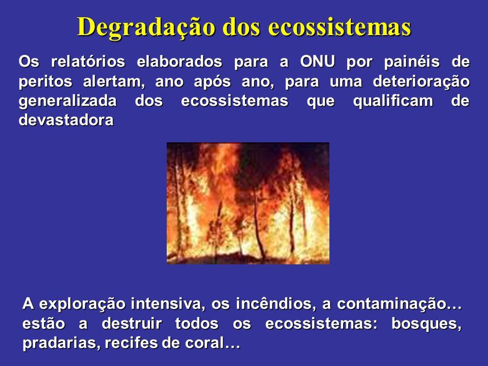 Degradação dos ecossistemas Os relatórios elaborados para a ONU por painéis de peritos alertam, ano após ano, para uma deterioração generalizada dos e