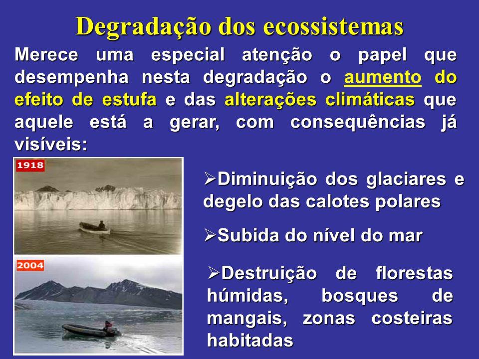 Degradação dos ecossistemas Merece uma especial atenção o papel que desempenha nesta degradação o do efeito de estufa e das alterações climáticas que