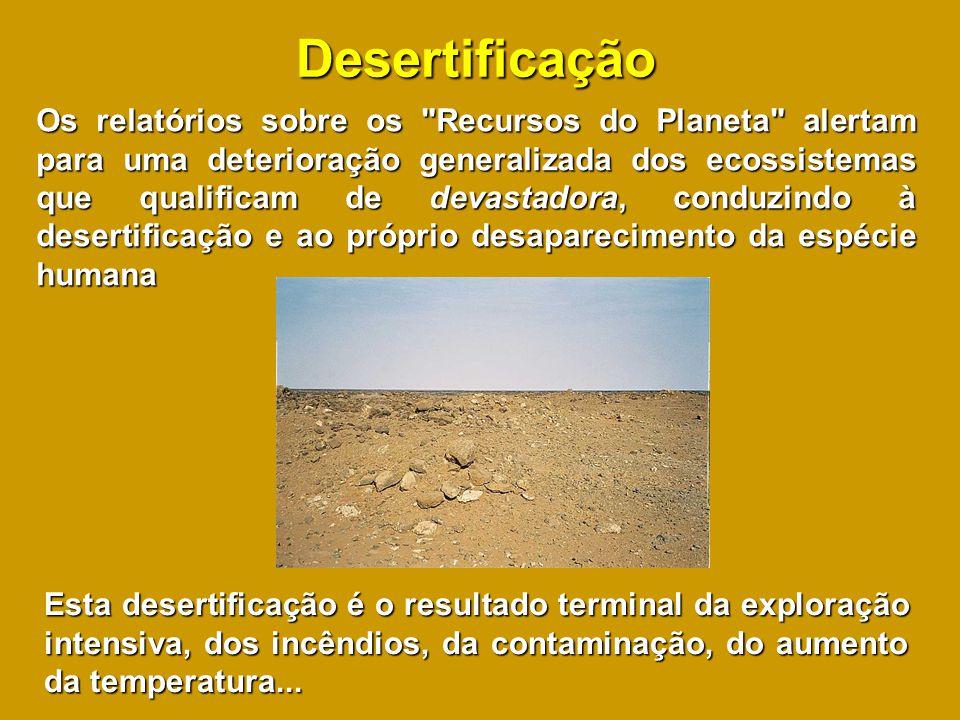 Desertificação Os relatórios sobre os