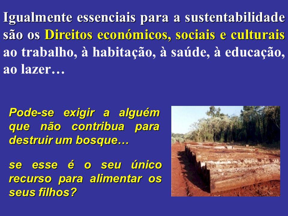 Igualmente essenciais para a sustentabilidade são os Direitos económicos, sociais e culturais Igualmente essenciais para a sustentabilidade são os Dir