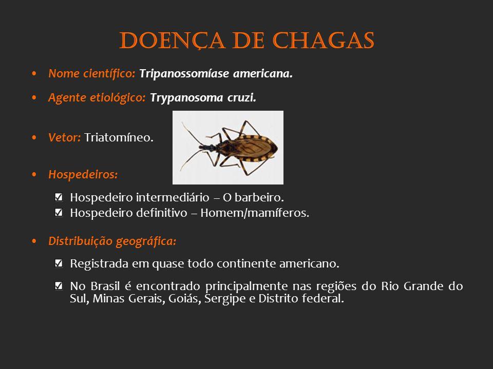 Doença de Chagas Nome científico: Tripanossomíase americana. Agente etiológico: Trypanosoma cruzi. Vetor: Triatomíneo. Hospedeiros : Hospedeiro interm