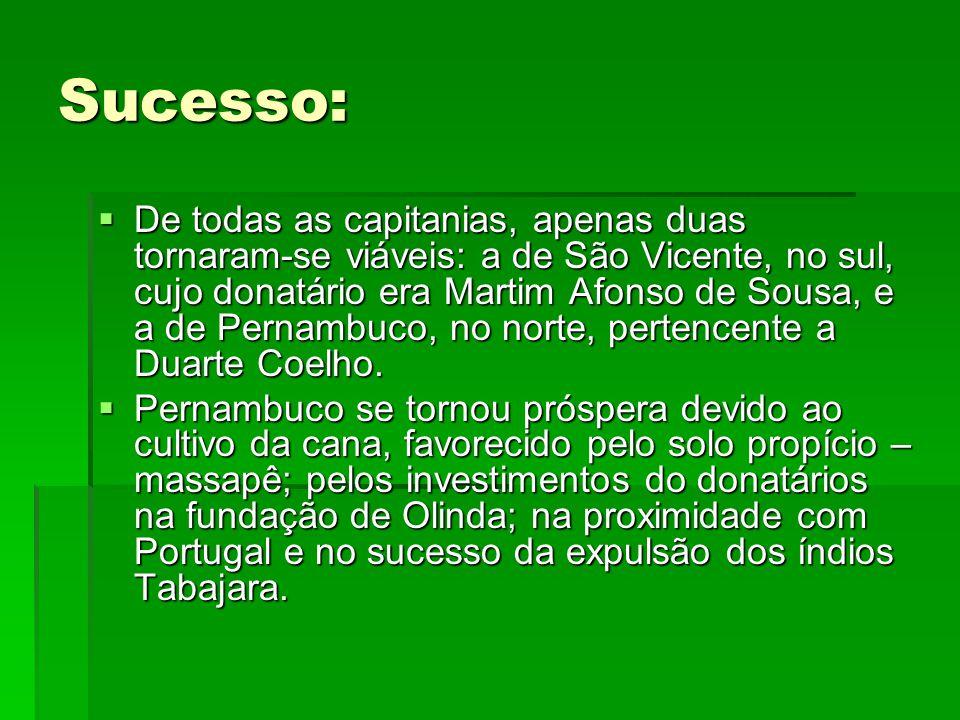 Sucesso:  De todas as capitanias, apenas duas tornaram-se viáveis: a de São Vicente, no sul, cujo donatário era Martim Afonso de Sousa, e a de Pernambuco, no norte, pertencente a Duarte Coelho.