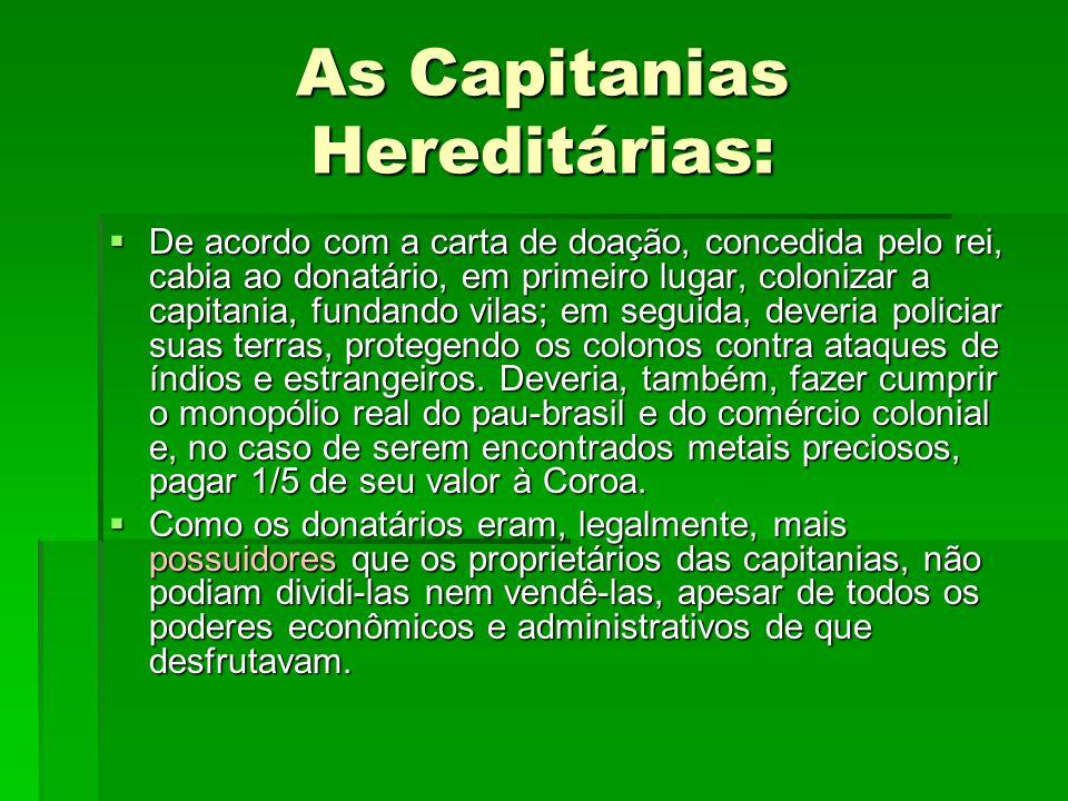  De acordo com a carta de doação, concedida pelo rei, cabia ao donatário, em primeiro lugar, colonizar a capitania, fundando vilas; em seguida, dever