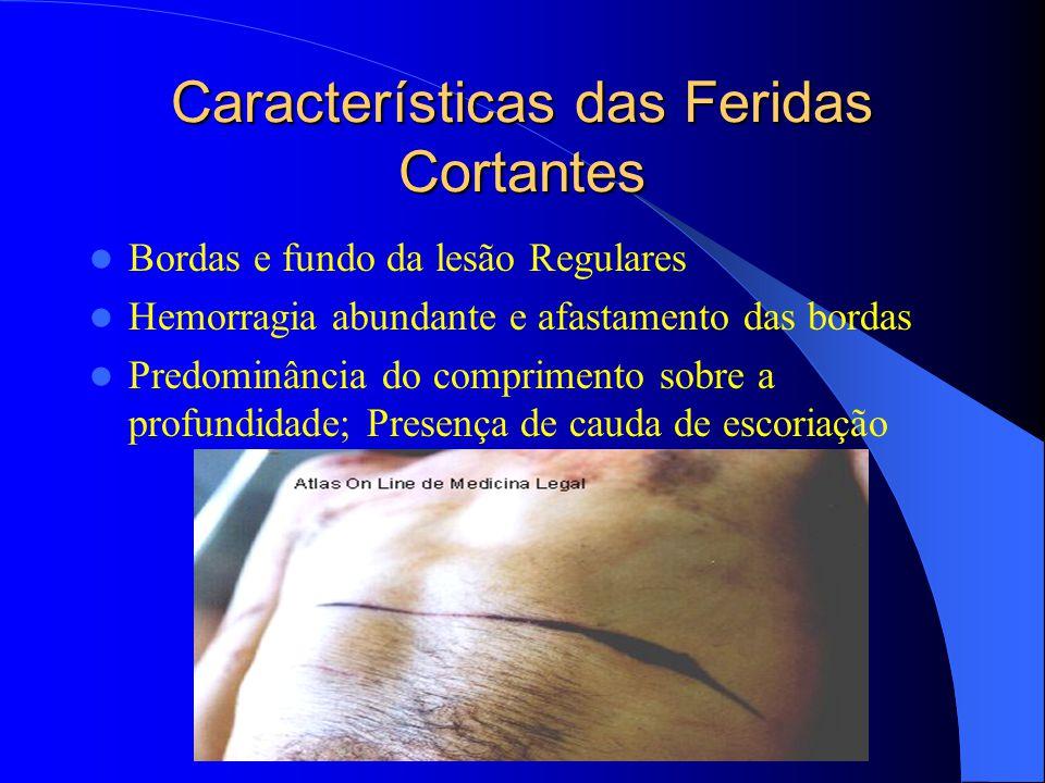 Características das Feridas Cortantes Bordas e fundo da lesão Regulares Hemorragia abundante e afastamento das bordas Predominância do comprimento sob