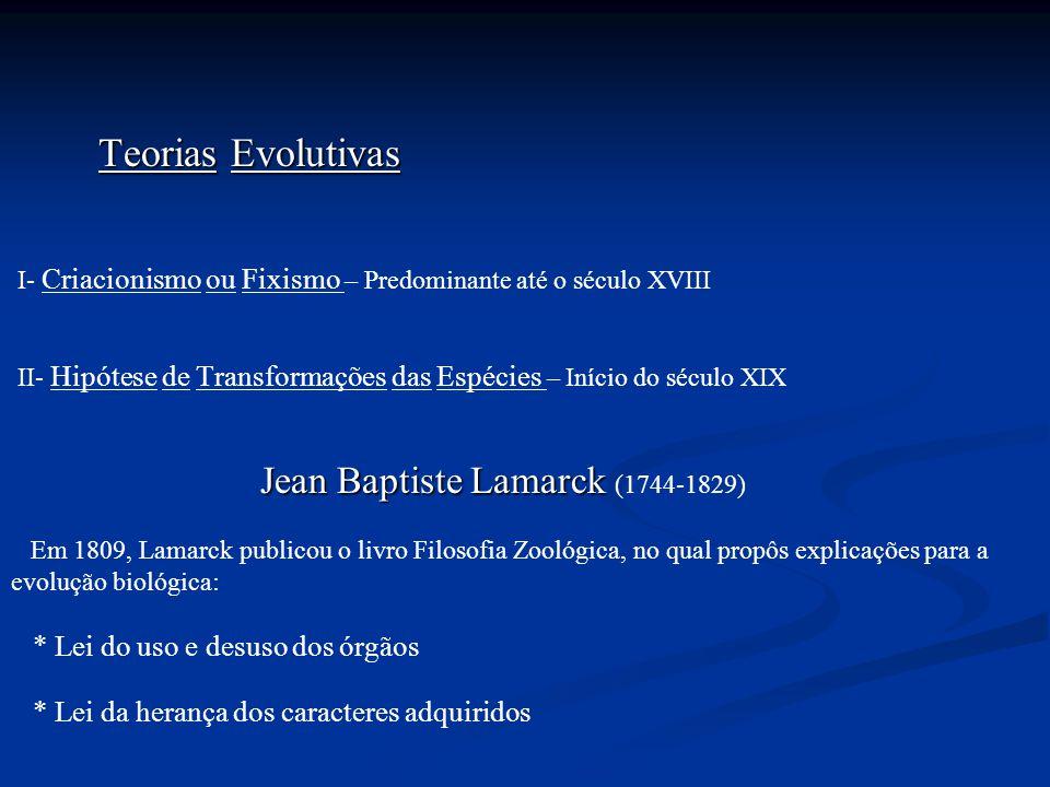 Teorias Evolutivas I- Criacionismo ou Fixismo – Predominante até o século XVIII II- Hipótese de Transformações das Espécies – Início do século XIX Jea