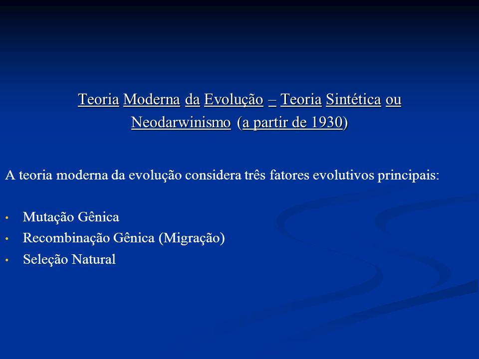 Teoria Moderna da Evolução – Teoria Sintética ou Neodarwinismo (a partir de 1930) A teoria moderna da evolução considera três fatores evolutivos princ
