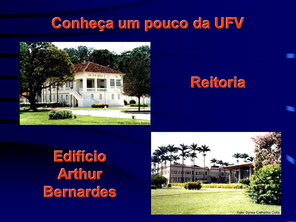 Conheça um pouco da UFV ReitoriaReitoria Edifício Arthur Bernardes