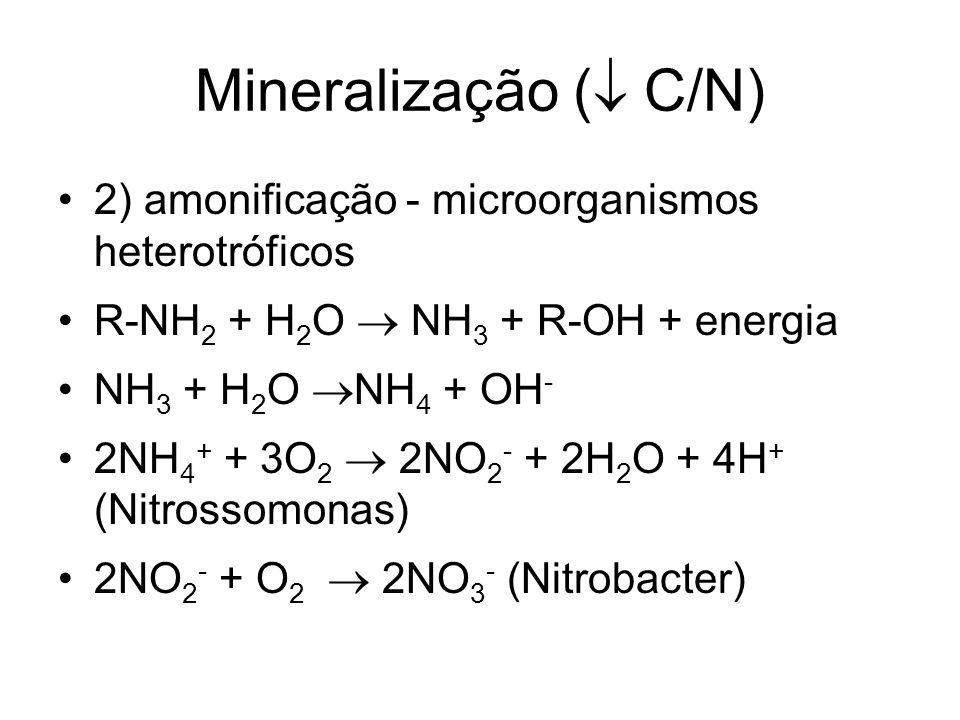 Mineralização (  C/N) 2) amonificação - microorganismos heterotróficos R-NH 2 + H 2 O  NH 3 + R-OH + energia NH 3 + H 2 O  NH 4 + OH - 2NH 4 + + 3O