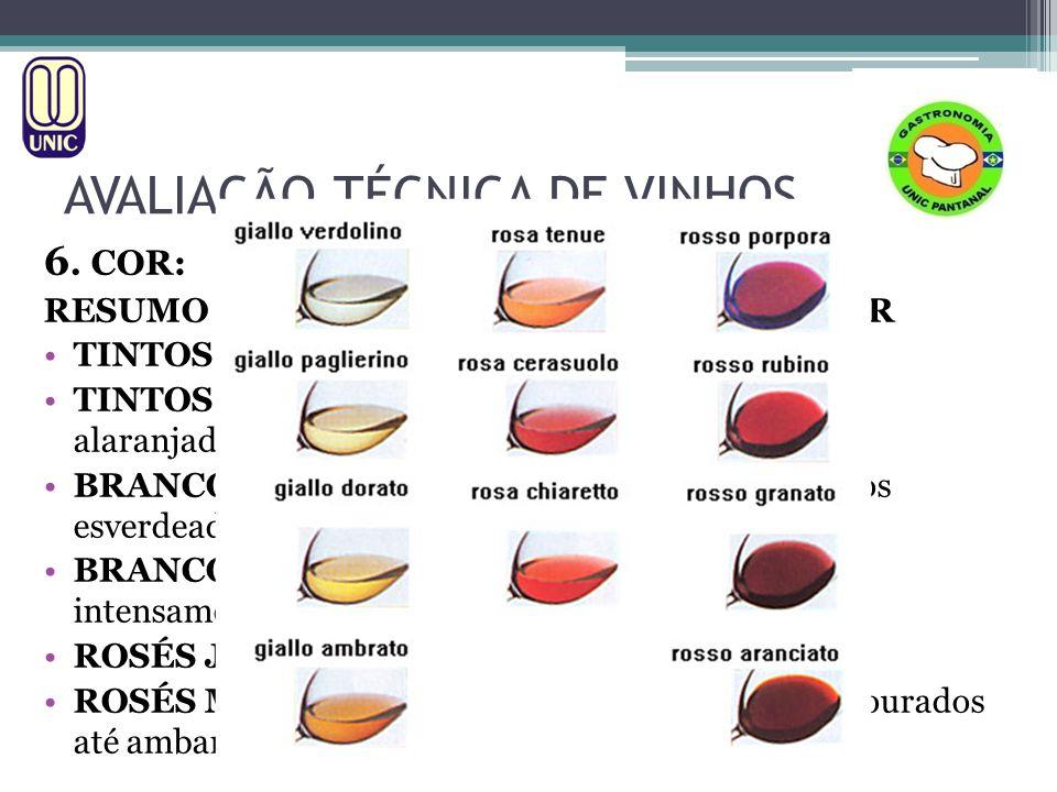 AVALIAÇÃO TÉCNICA DE VINHOS 6. COR: RESUMO DAS PRINCIPAIS VARIAÇÕES DE COR TINTOS JOVENS: De violeta pálido a rubi intenso TINTOS MADUROS: De rubi pál