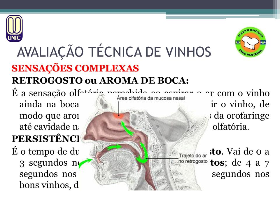 AVALIAÇÃO TÉCNICA DE VINHOS SENSAÇÕES COMPLEXAS RETROGOSTO ou AROMA DE BOCA: É a sensação olfatória percebida ao aspirar o ar com o vinho ainda na boc