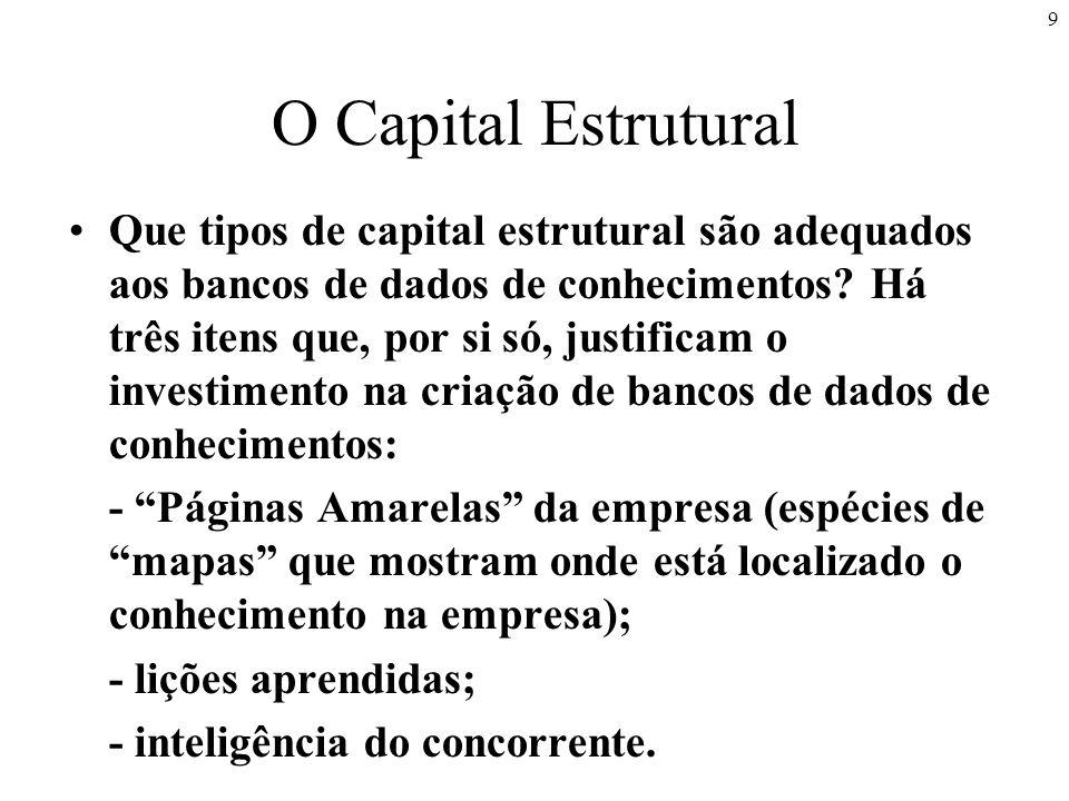 9 O Capital Estrutural Que tipos de capital estrutural são adequados aos bancos de dados de conhecimentos.