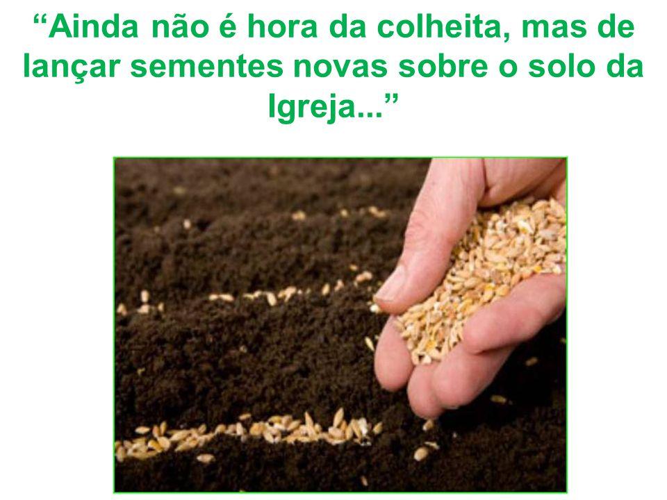 """""""Ainda não é hora da colheita, mas de lançar sementes novas sobre o solo da Igreja..."""""""