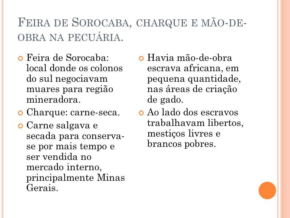 F EIRA DE S OROCABA, CHARQUE E MÃO - DE - OBRA NA PECUÁRIA. Feira de Sorocaba: local donde os colonos do sul negociavam muares para região mineradora.