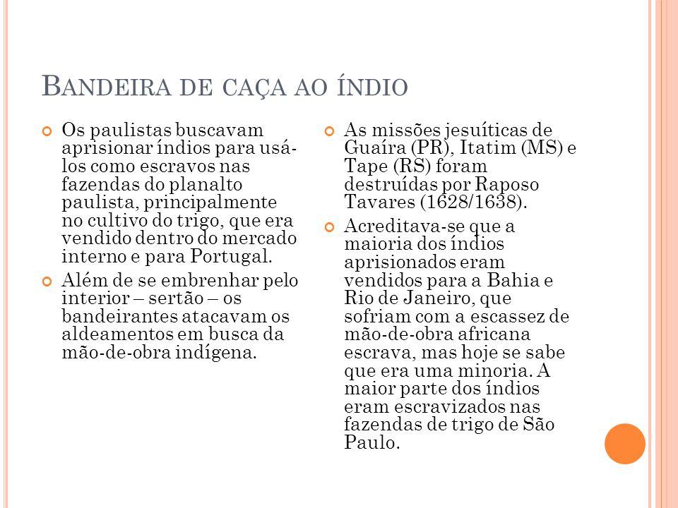 B ANDEIRA DE CAÇA AO ÍNDIO Os paulistas buscavam aprisionar índios para usá- los como escravos nas fazendas do planalto paulista, principalmente no cu