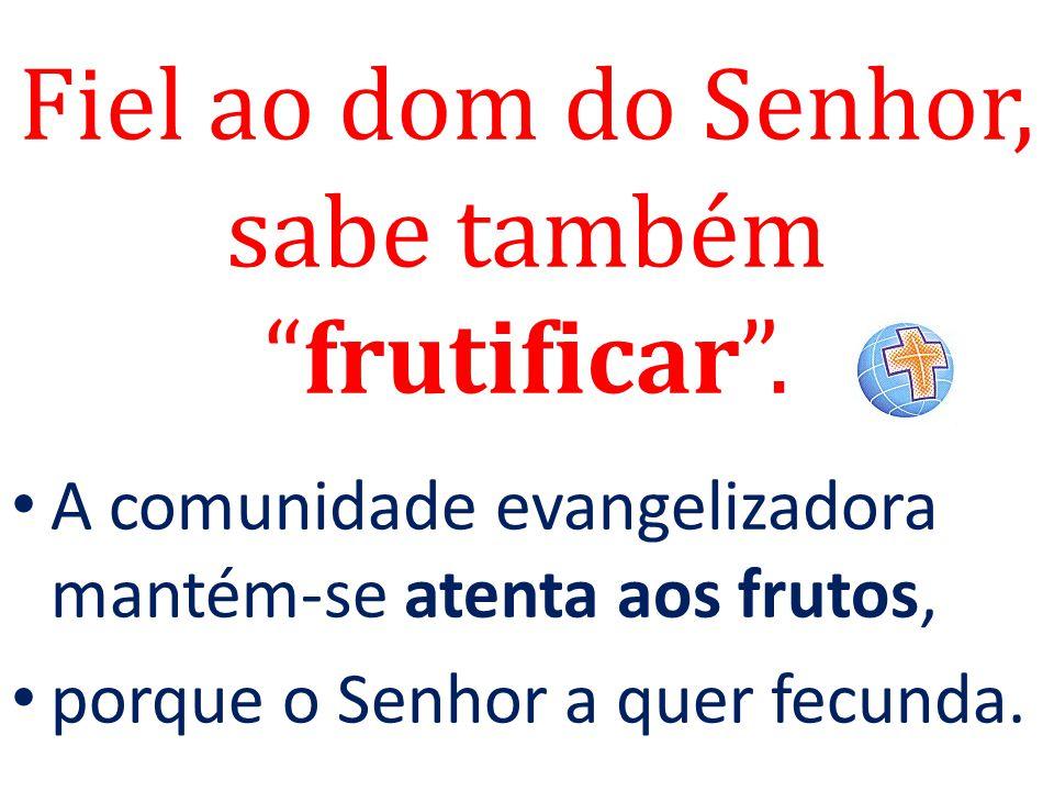 """Fiel ao dom do Senhor, sabe também """"frutificar"""". A comunidade evangelizadora mantém-se atenta aos frutos, porque o Senhor a quer fecunda."""