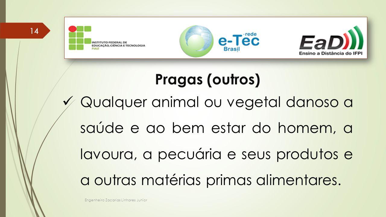 Engenheiro Zacarias Linhares Junior 14 Pragas (outros) Qualquer animal ou vegetal danoso a saúde e ao bem estar do homem, a lavoura, a pecuária e seus