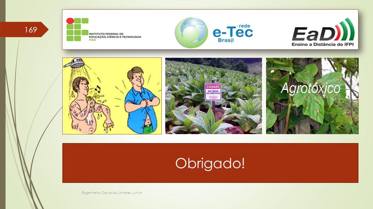 Obrigado! Engenheiro Zacarias Linhares Junior 169 Foto e arte: mundoorgnico.blogspot.com