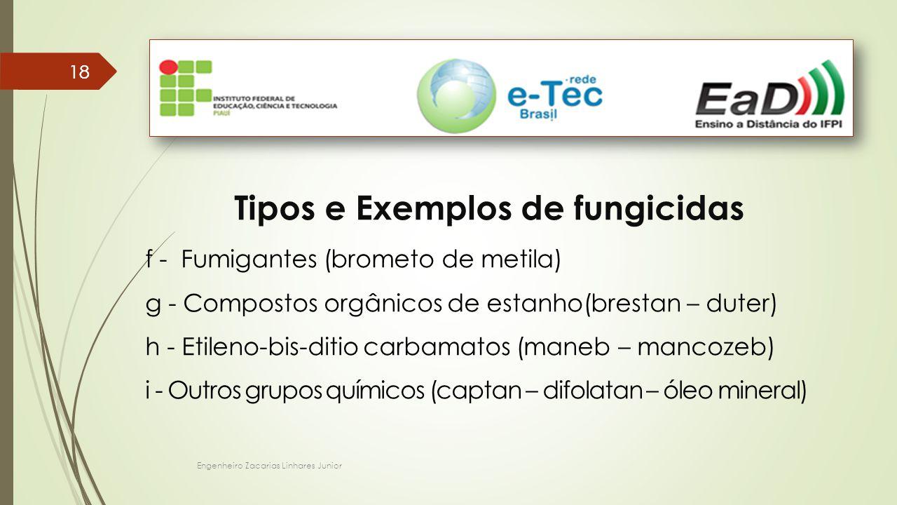 Engenheiro Zacarias Linhares Junior 18 Tipos e Exemplos de fungicidas f - Fumigantes (brometo de metila) g - Compostos orgânicos de estanho(brestan – duter) h - Etileno-bis-ditio carbamatos (maneb – mancozeb) i - Outros grupos químicos (captan – difolatan – óleo mineral)