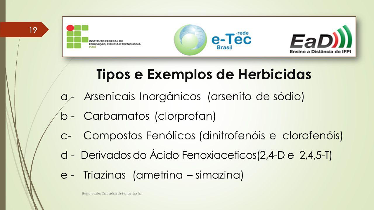 Engenheiro Zacarias Linhares Junior 19 Tipos e Exemplos de Herbicidas a - Arsenicais Inorgânicos (arsenito de sódio) b - Carbamatos (clorprofan) c- Compostos Fenólicos (dinitrofenóis e clorofenóis) d - Derivados do Ácido Fenoxiaceticos(2,4-D e 2,4,5-T) e - Triazinas (ametrina – simazina)