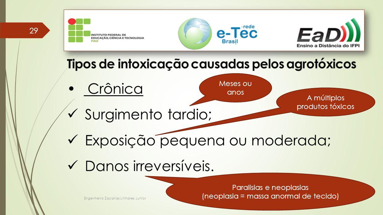 Engenheiro Zacarias Linhares Junior 29 Tipos de intoxicação causadas pelos agrotóxicos Crônica Surgimento tardio; Exposição pequena ou moderada; Danos irreversíveis.