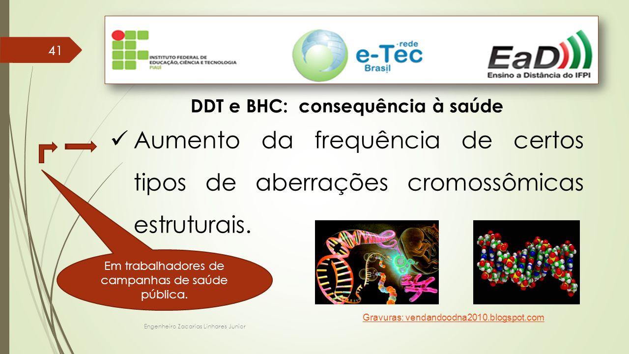 Engenheiro Zacarias Linhares Junior 41 DDT e BHC: consequência à saúde Aumento da frequência de certos tipos de aberrações cromossômicas estruturais.