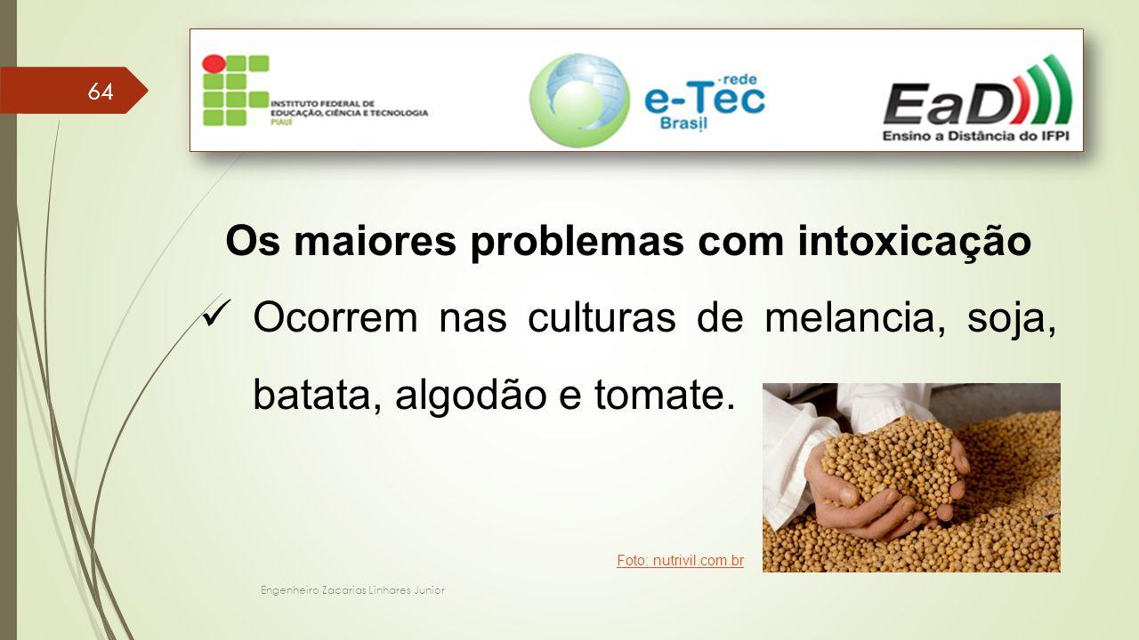 Engenheiro Zacarias Linhares Junior 64 Os maiores problemas com intoxicação Ocorrem nas culturas de melancia, soja, batata, algodão e tomate.
