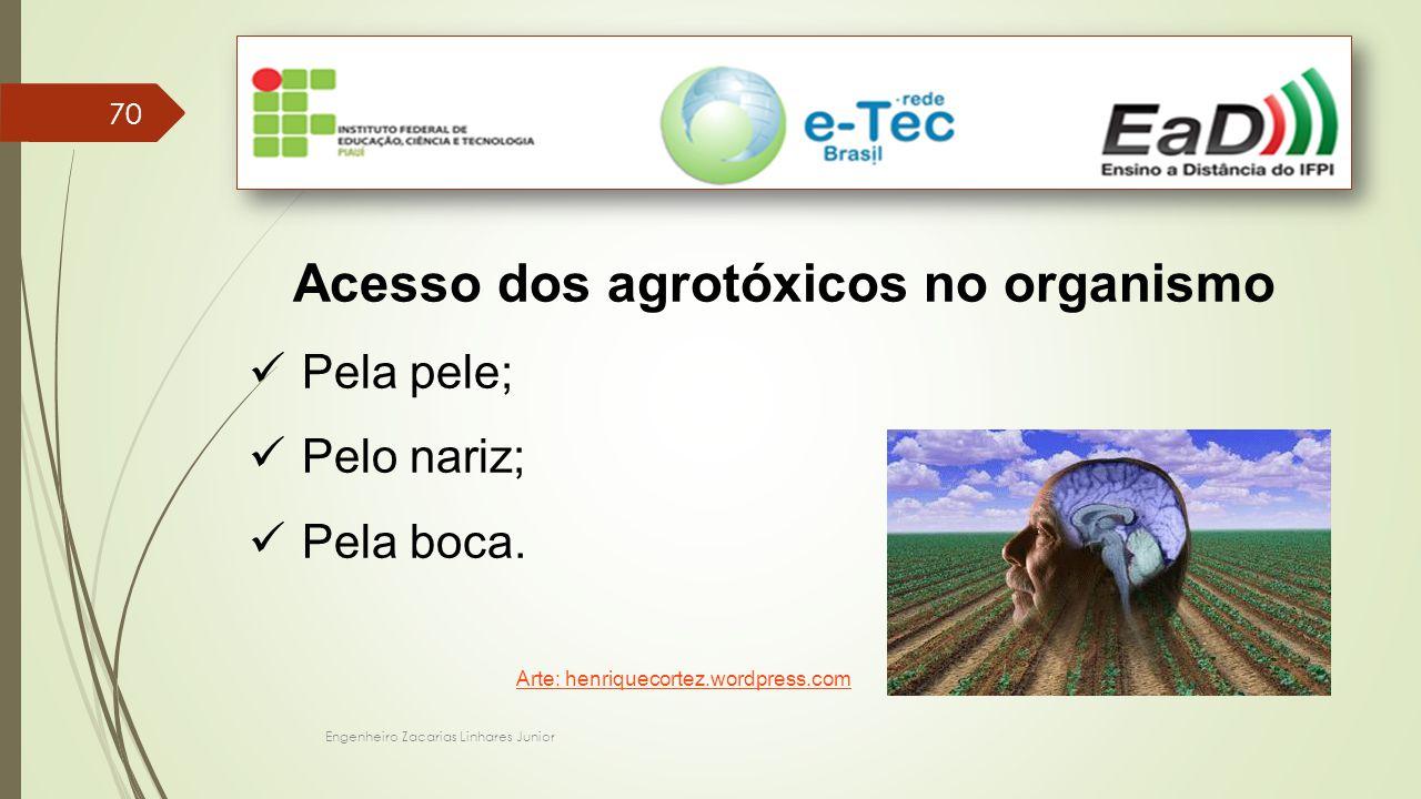 Engenheiro Zacarias Linhares Junior 70 Acesso dos agrotóxicos no organismo Pela pele; Pelo nariz; Pela boca.