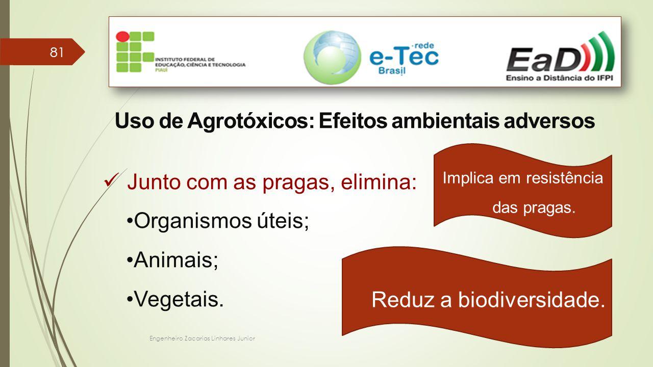 Engenheiro Zacarias Linhares Junior 81 Uso de Agrotóxicos: Efeitos ambientais adversos Junto com as pragas, elimina: Organismos úteis; Animais; Vegeta