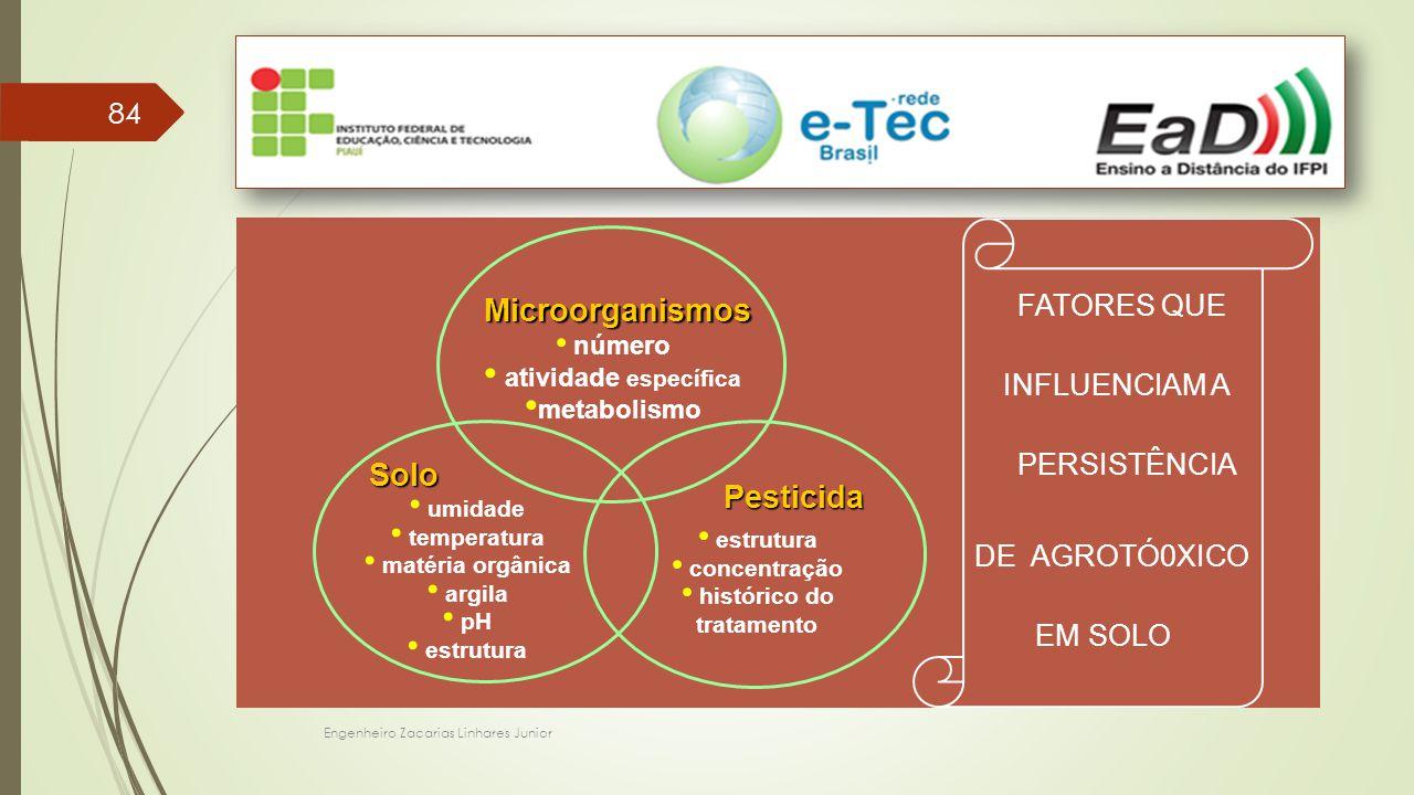 Engenheiro Zacarias Linhares Junior 84 FATORES QUE INFLUENCIAM A PERSISTÊNCIA DE AGROTÓ0XICO EM SOLO Microorganismos número atividade específica metab