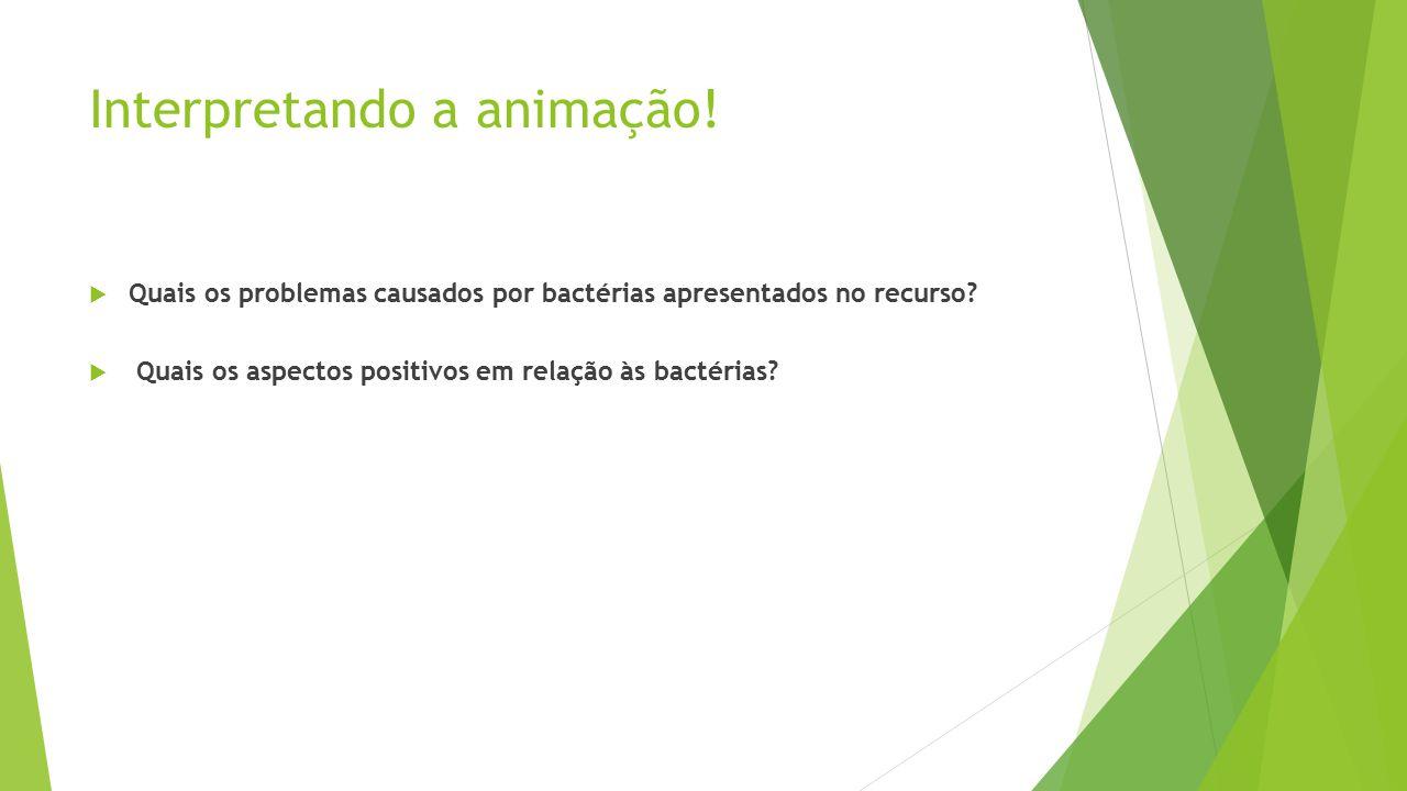 Interpretando a animação. Quais os problemas causados por bactérias apresentados no recurso.