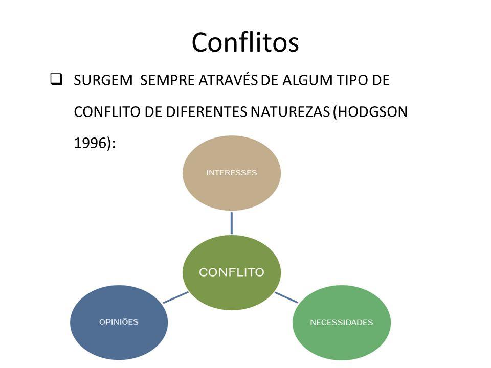 CONFLITOS ORGANIZAÇÕES INTERESSES AGLOMERADOS DE SUBSGRUPOS